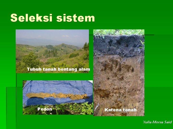 Seleksi sistem Tubuh tanah bentang alam Pedon Katena tanah Yulia Morsa Said