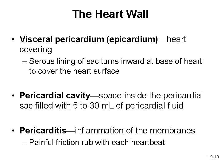 The Heart Wall • Visceral pericardium (epicardium)—heart covering – Serous lining of sac turns