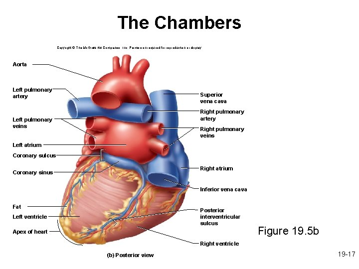 The Chambers Copyright © The Mc. Graw-Hill Companies, Inc. Permission required for reproduction or