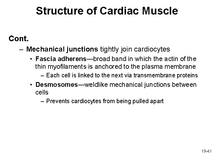 Structure of Cardiac Muscle Cont. – Mechanical junctions tightly join cardiocytes • Fascia adherens—broad