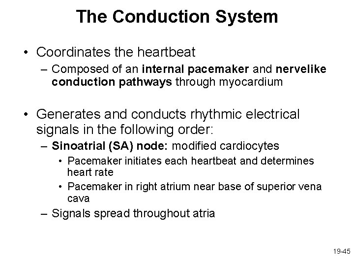 The Conduction System • Coordinates the heartbeat – Composed of an internal pacemaker and