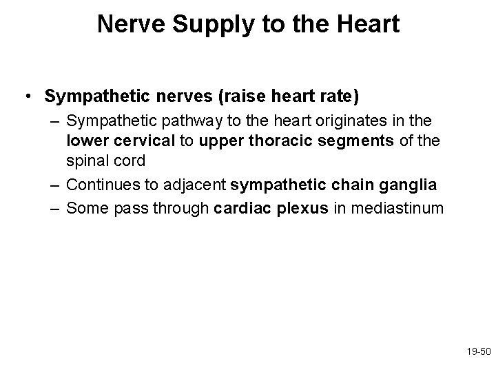 Nerve Supply to the Heart • Sympathetic nerves (raise heart rate) – Sympathetic pathway