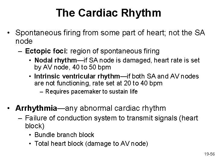 The Cardiac Rhythm • Spontaneous firing from some part of heart; not the SA
