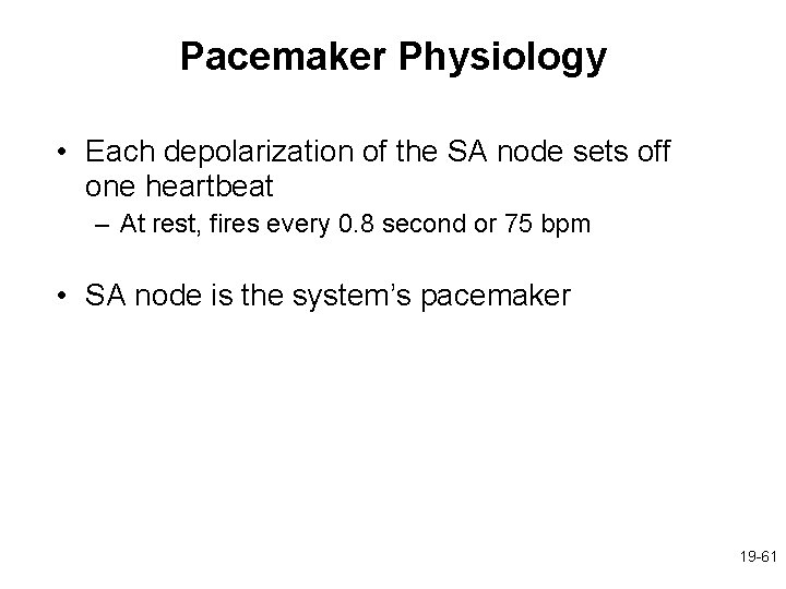 Pacemaker Physiology • Each depolarization of the SA node sets off one heartbeat –