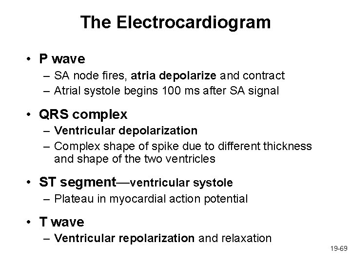 The Electrocardiogram • P wave – SA node fires, atria depolarize and contract –