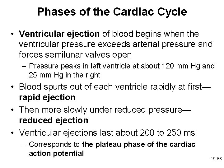 Phases of the Cardiac Cycle • Ventricular ejection of blood begins when the ventricular