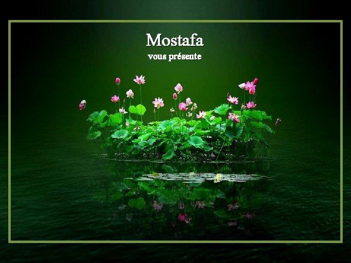 Mostafa vous présente