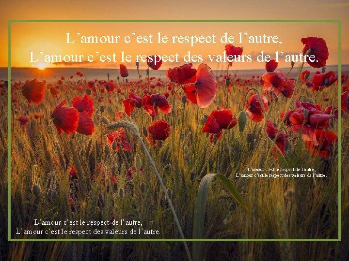 L'amour c'est le respect de l'autre, L'amour c'est le respect des valeurs de l'autre.