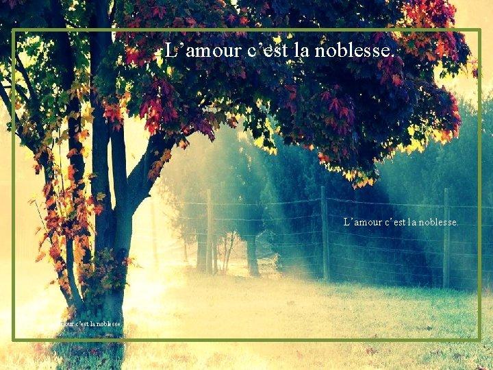 L'amour c'est la noblesse.