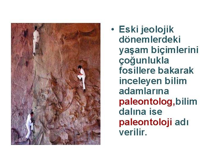• Eski jeolojik dönemlerdeki yaşam biçimlerini çoğunlukla fosillere bakarak inceleyen bilim adamlarına paleontolog,