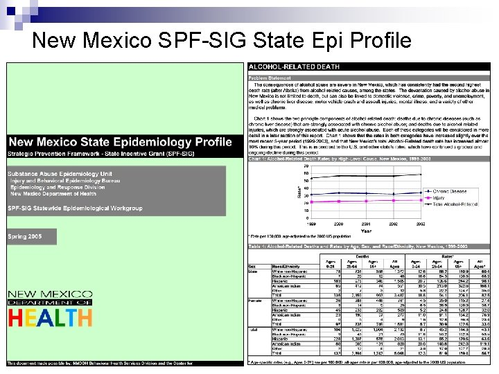 New Mexico SPF-SIG State Epi Profile
