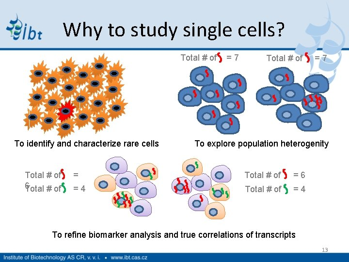 Why to study single cells? Total # of = 7 To identify and characterize