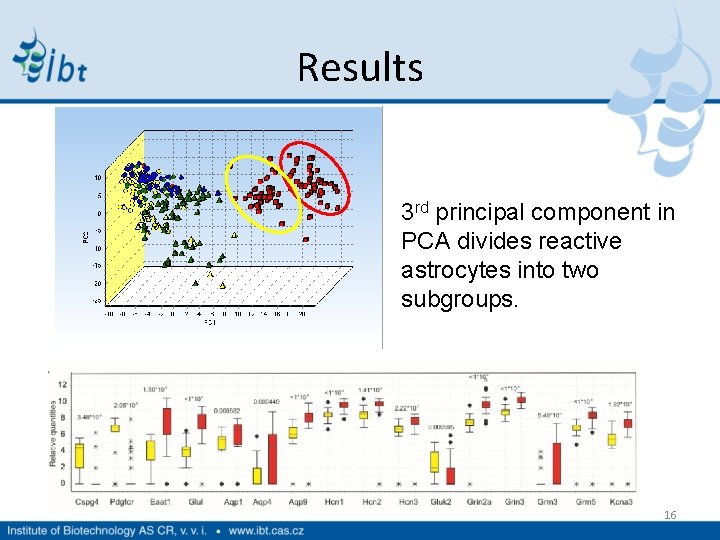Results 3 rd principal component in PCA divides reactive astrocytes into two subgroups. 16
