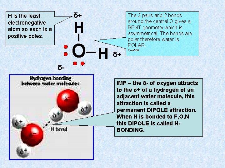 δ+ H is the least electronegative atom so each is a positive poles. H