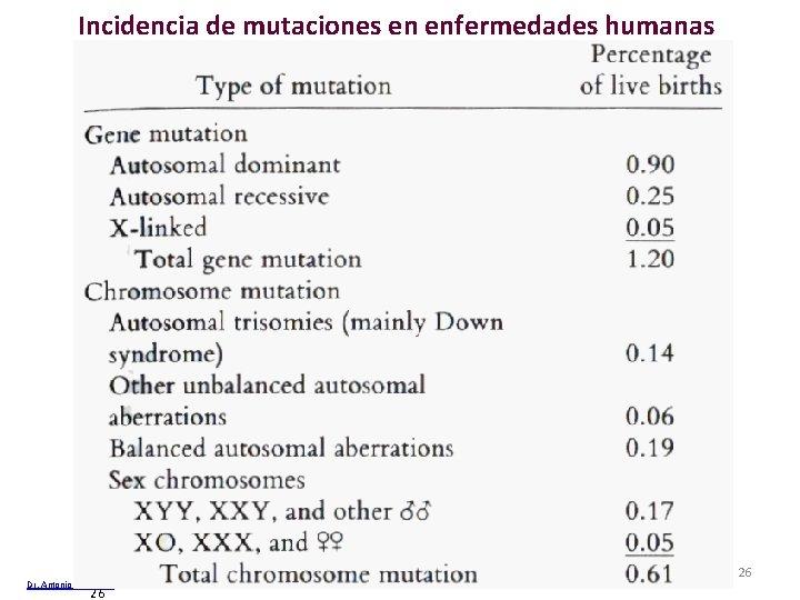 Incidencia de mutaciones en enfermedades humanas Dr. Antonio Barbadilla 26 Tema 13 Cambios cromosómicos