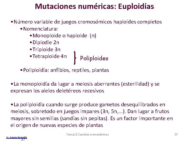 Mutaciones numéricas: Euploidías • Número variable de juegos cromosómicos haploides completos • Nomenclatura: •