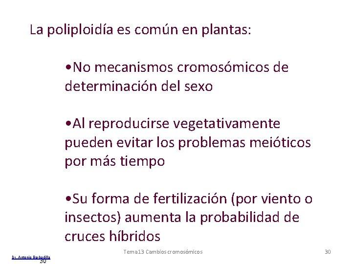 La poliploidía es común en plantas: • No mecanismos cromosómicos de determinación del sexo