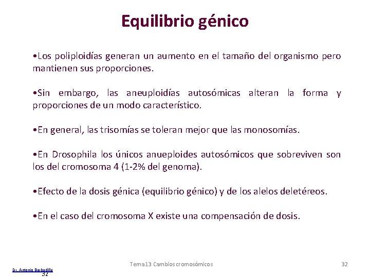 Equilibrio génico • Los poliploidías generan un aumento en el tamaño del organismo pero