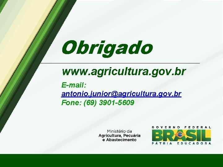 Obrigado www. agricultura. gov. br E-mail: antonio. junior@agricultura. gov. br Fone: (69) 3901 -5609