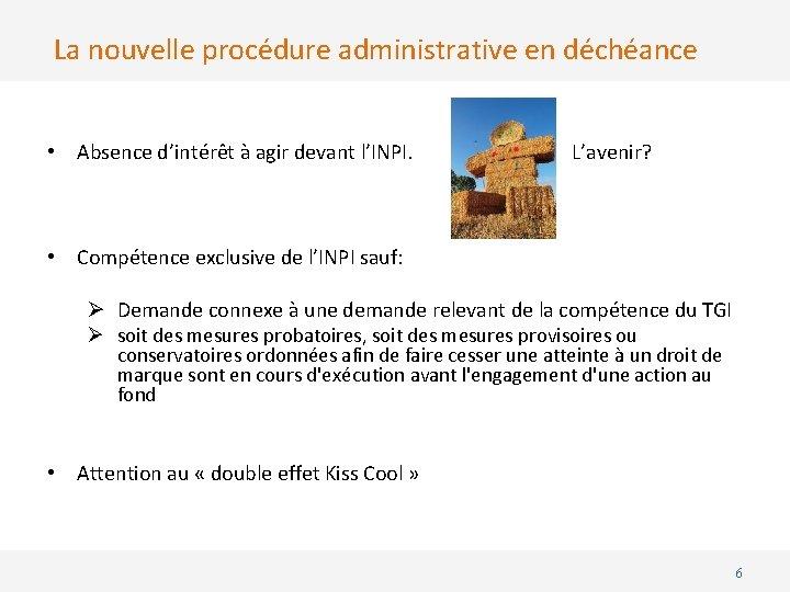 La nouvelle procédure administrative en déchéance • Absence d'intérêt à agir devant l'INPI. L'avenir?