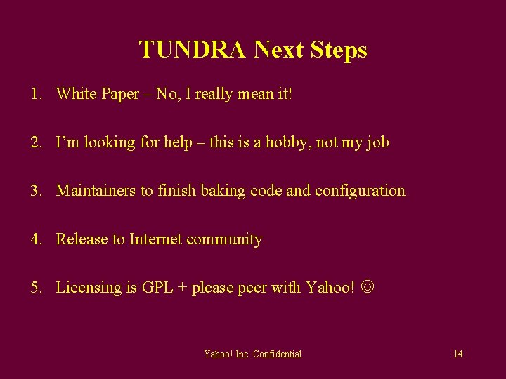TUNDRA Next Steps 1. White Paper – No, I really mean it! 2. I'm
