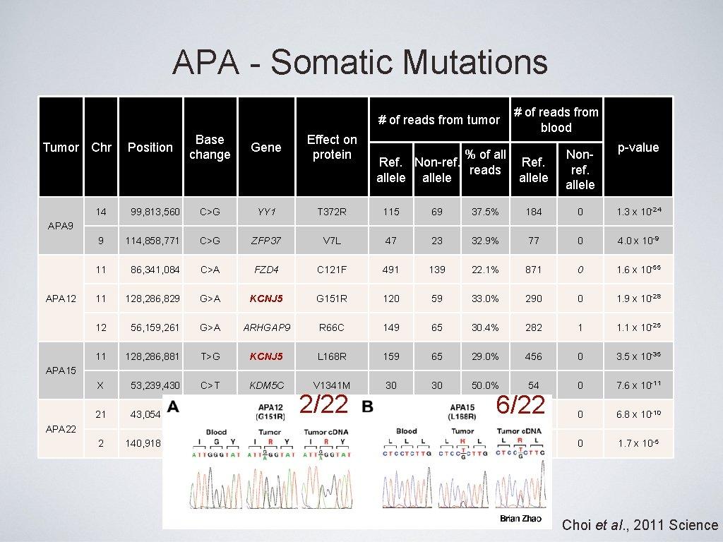 APA - Somatic Mutations # of reads from tumor Tumor Chr Position Base change