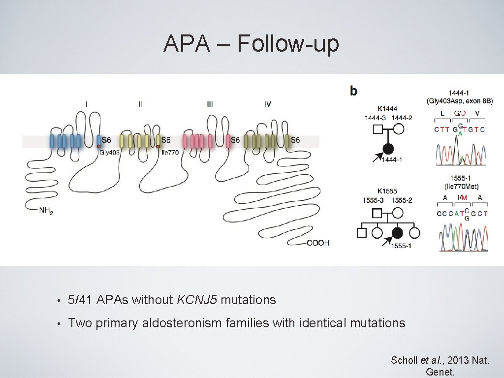 APA – Follow-up • 5/41 APAs without KCNJ 5 mutations • Two primary aldosteronism