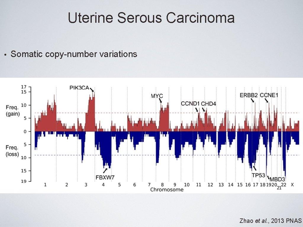 Uterine Serous Carcinoma • Somatic copy-number variations Zhao et al. , 2013 PNAS