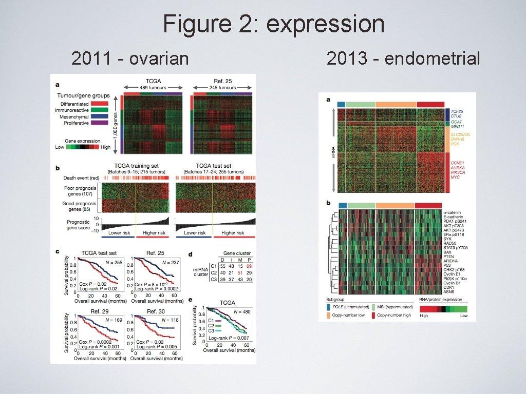 Figure 2: expression 2011 - ovarian 2013 - endometrial