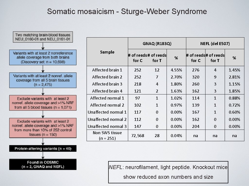 Somatic mosaicism - Sturge-Weber Syndrome GNAQ (R 183 Q) Sample # of reads for
