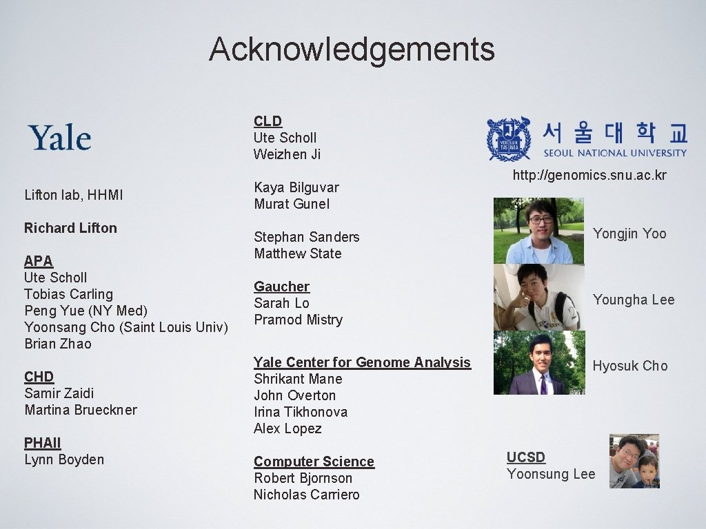 Acknowledgements CLD Ute Scholl Weizhen Ji Lifton lab, HHMI Richard Lifton APA Ute Scholl