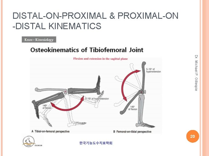DISTAL-ON-PROXIMAL & PROXIMAL-ON -DISTAL KINEMATICS Dr. Michael P. Gillespie 20