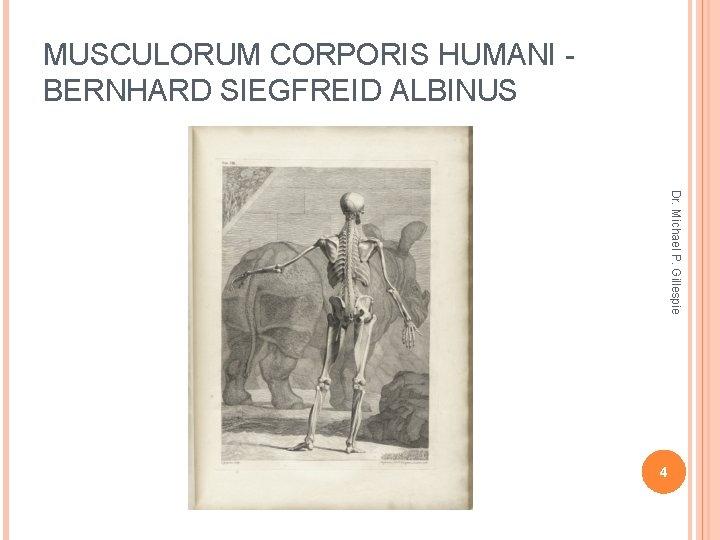 MUSCULORUM CORPORIS HUMANI BERNHARD SIEGFREID ALBINUS Dr. Michael P. Gillespie 4