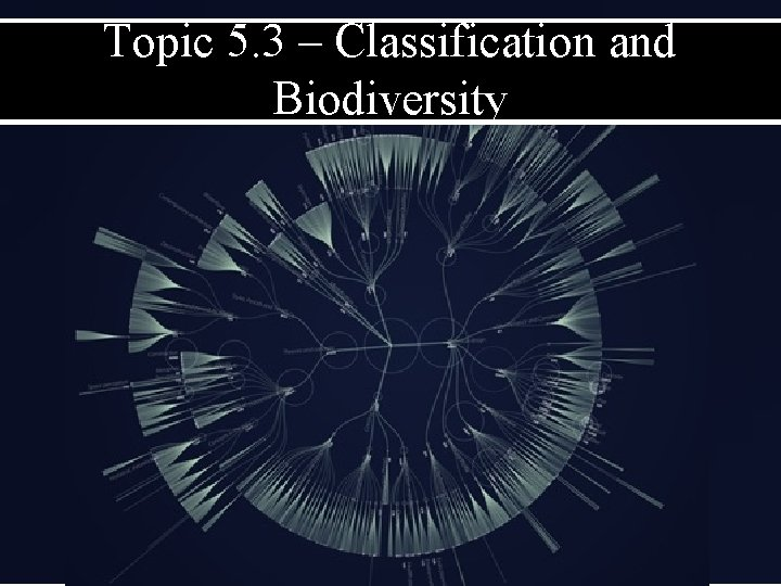 Topic 5. 3 – Classification and Biodiversity