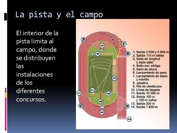 La pista y el campo El interior de la pista limita al campo, donde
