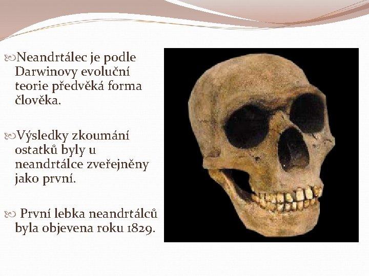Neandrtálec je podle Darwinovy evoluční teorie předvěká forma člověka. Výsledky zkoumání ostatků byly