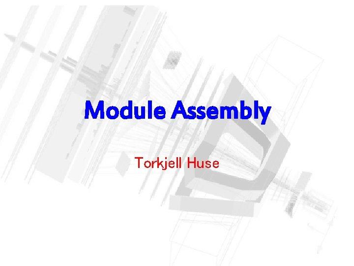 Module Assembly Torkjell Huse