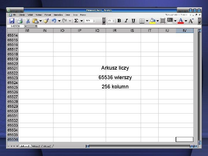 Arkusz liczy 65536 wierszy 256 kolumn