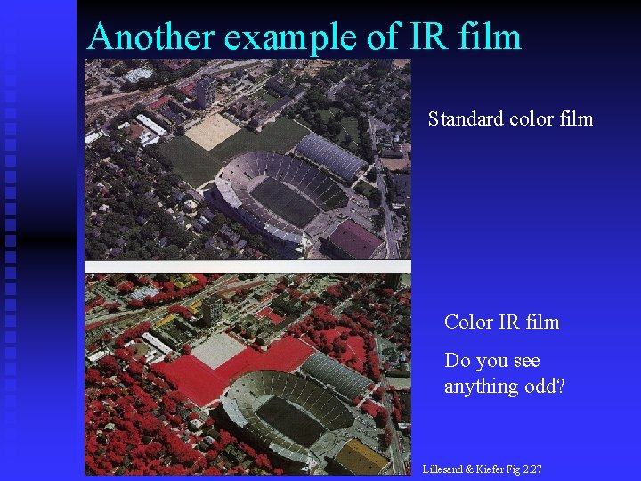 Another example of IR film Standard color film Color IR film Do you see