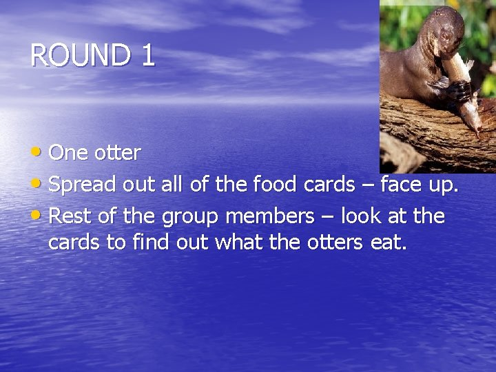 ROUND 1 • One otter • Spread out all of the food cards –