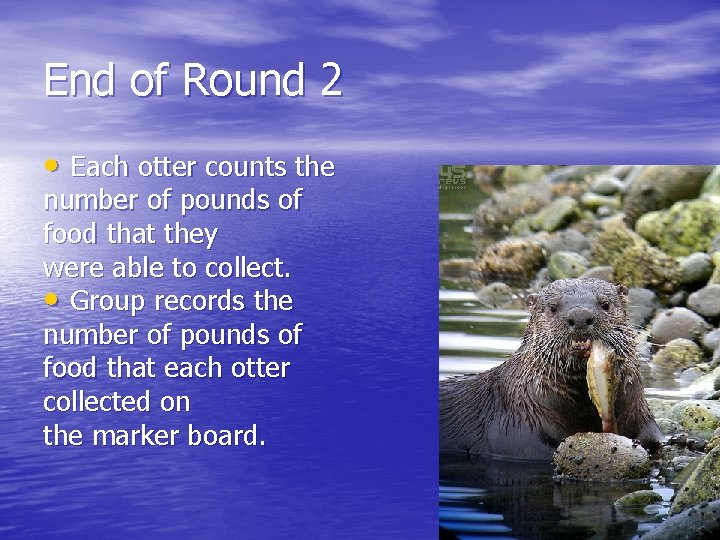 End of Round 2 • Each otter counts the number of pounds of food