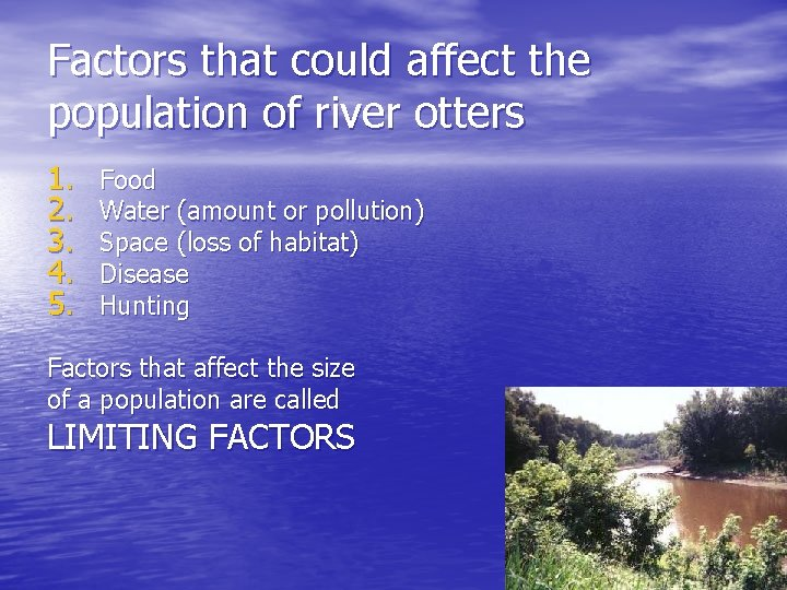 Factors that could affect the population of river otters 1. 2. 3. 4. 5.