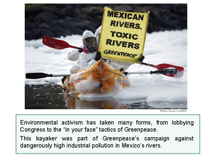 """Environmental activism has taken many forms, from lobbying Congress to the """"in your face"""""""