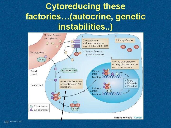 Cytoreducing these factories…(autocrine, genetic instabilities. . )