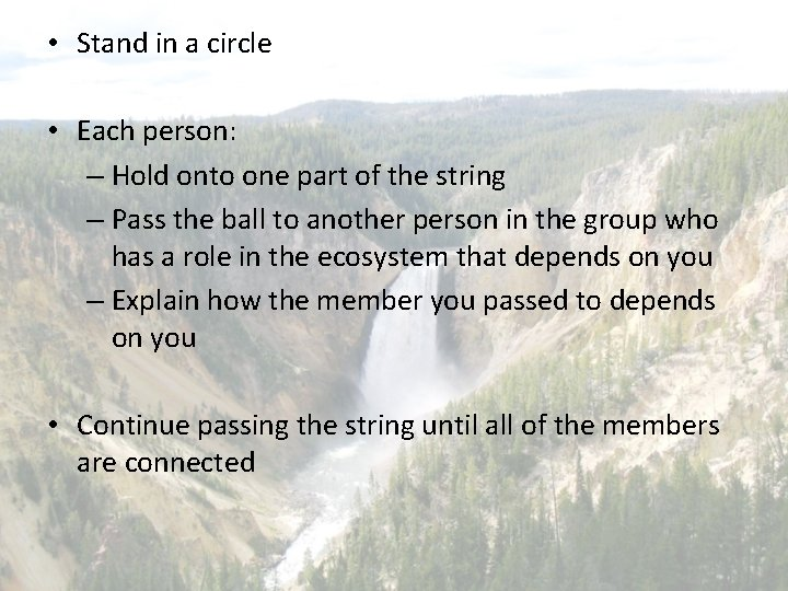 • Stand in a circle • Each person: – Hold onto one part