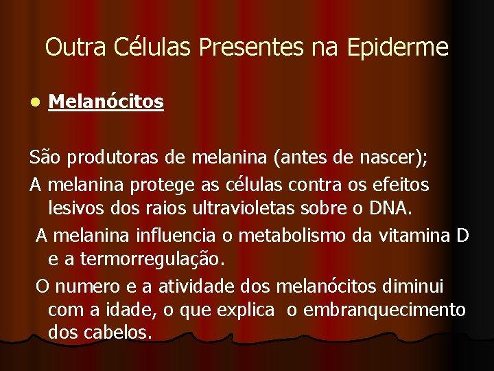 Outra Células Presentes na Epiderme l Melanócitos São produtoras de melanina (antes de nascer);