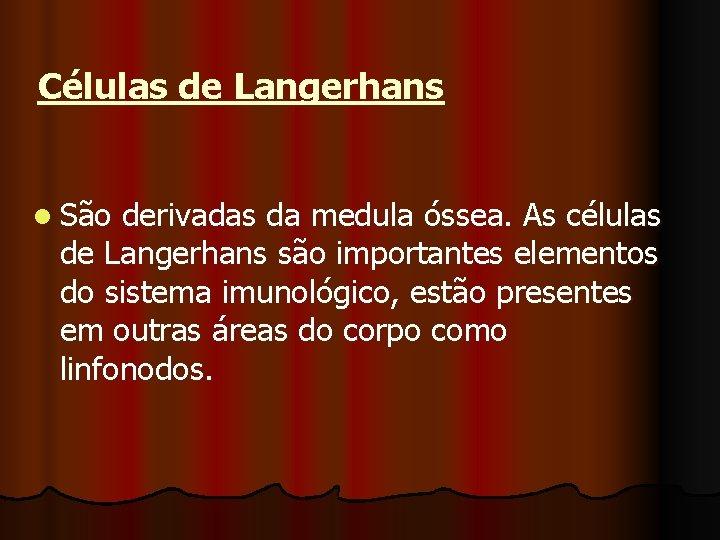 Células de Langerhans l São derivadas da medula óssea. As células de Langerhans são