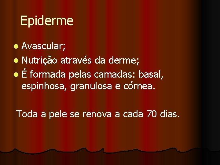 Epiderme l Avascular; l Nutrição através da derme; l É formada pelas camadas: basal,