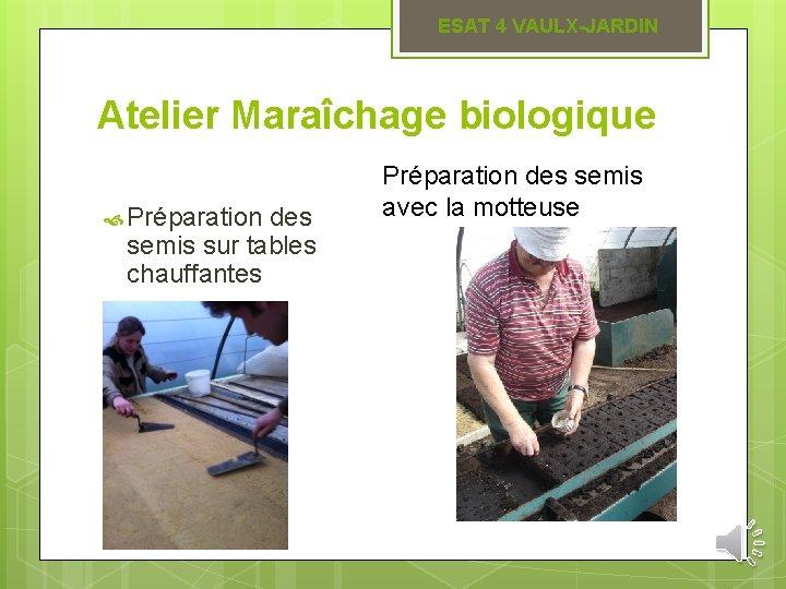 ESAT 4 VAULX-JARDIN Atelier Maraîchage biologique Préparation des semis sur tables chauffantes Préparation des