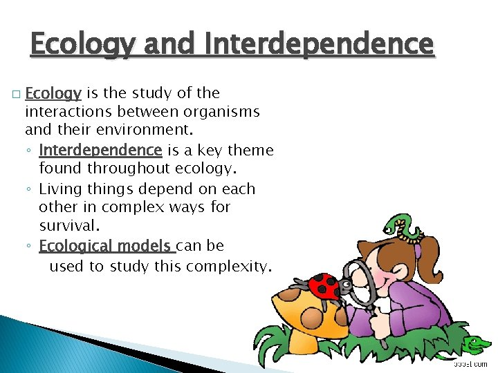 Ecology and Interdependence � Ecology is the study of the interactions between organisms and